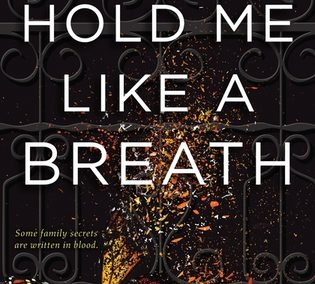 Hold Me Like a Breath by Tiffany Schmidt