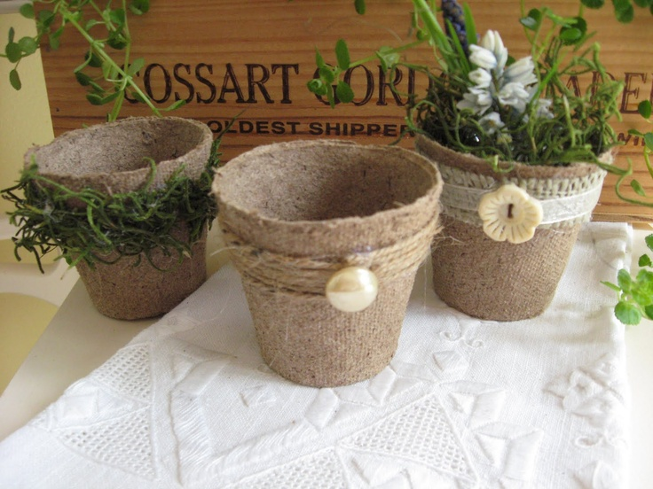 Decorated Peat Pot Plants