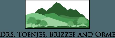 Toenjes, Brizzee, Orme Family Dental