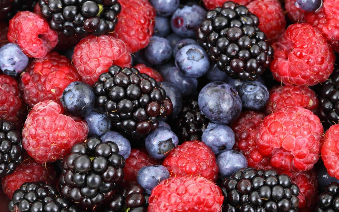Story Time – Berry Delicious