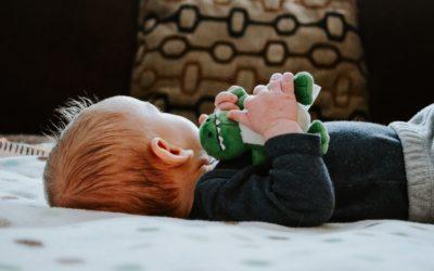 Book Babies: Dino Snores