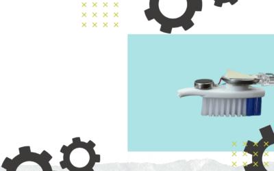 Summer STEM: Toothbrush Critters