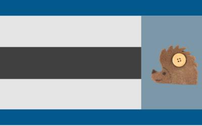 Teen Craft: Hedgehog Earbud + Cord Holder