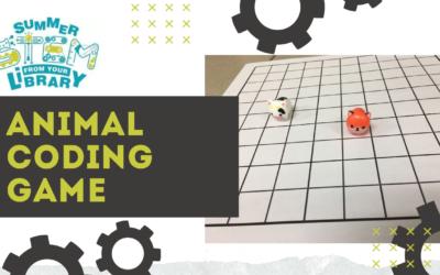 Summer STEM: Animal Coding Game