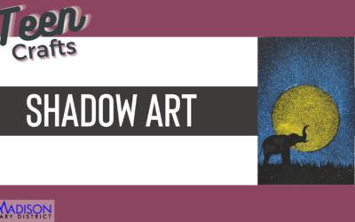 Teen Craft: Shadow Art
