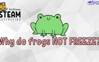 Kids + Tween STEAM Craft: Jumping Frogs